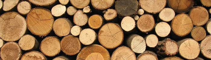 Biomass Boiler Installations | Wood Logs